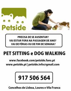 Dog Walking e Pet Sitting em Lisboa e Loures
