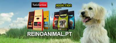 Venda de Ração Online Satisfaction Addiction Royal