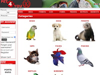 PET4YOU - A SUA PET SHOP ONLINE