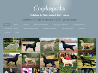 Angelusparks - Golden & Flatcoated Retriever